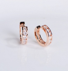 Silver Circle Rhinestone Small Earring Gemstone Hook Earring Wholesale Rose Gold-1