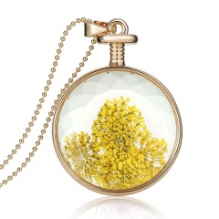 Natural Dried Flower Real Round Glass Locket Pendant Necklace Jewelry Gift New Yellow