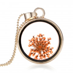 New Natural Real Dried Flower Resin Round Glass Floating Locket Pendant Necklace Orange shivering