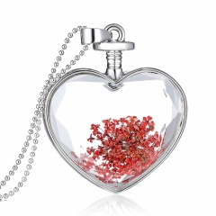 Fancy Dandelion Seeds Dried Flower Glass Bottle Wishing Pendant Necklace Charm Lace Red