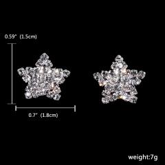 12Pairs Silver Rhinestone Gemstone Earring Jewelry Wedding Stud Earrings 121-6262